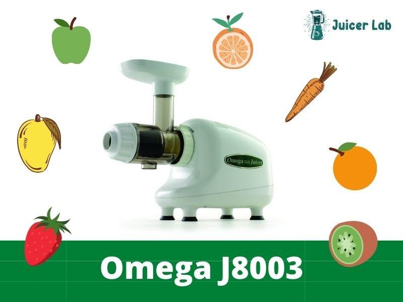 Omega J8003 Juicer Review