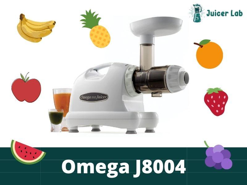 Omega J8004 Juicer Review