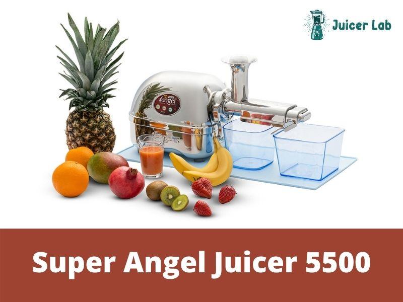 Super Angel Juicer 5500