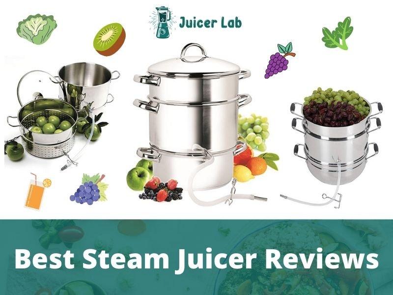 Best Steam Juicer Reviews