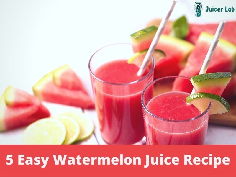 Top 5 Simple and Easy Watermelon Juice Recipe You Can Follow at Home